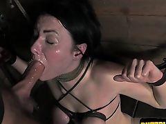 18 year old pornstar ball licking